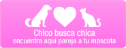 Chico busca chica